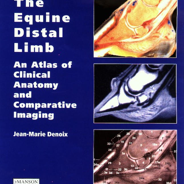 The Equine Distal Limb An Atlas of Clinical Anatomy and Comparative ...